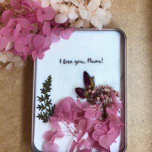 pink hydrangea pocket flower garden open view